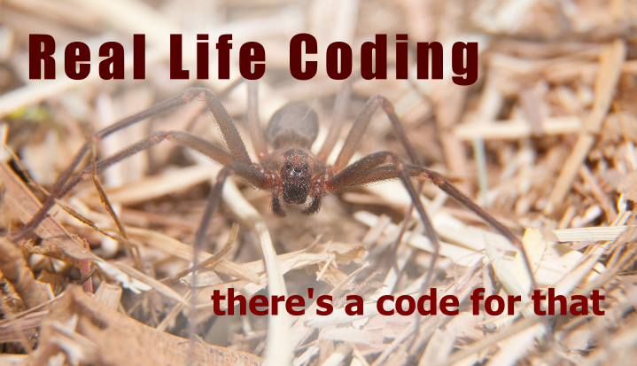 Real Life Coding: Brown Recluse Spider Dilemma Coding in ICD-10